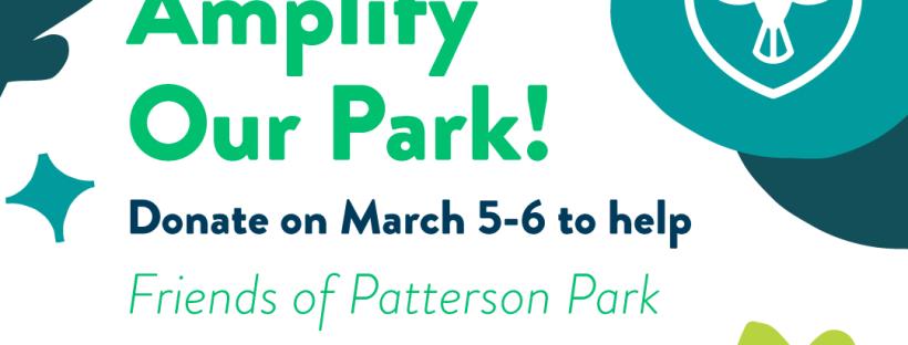 Amplify Our Park 2020